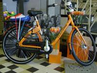 Gazelle MPB fiets in NOC*NSF uitvoering