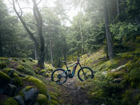 Full e 0 sx woods 560x420