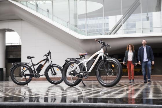 Onbekende categorie e-bikes met meer power