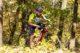 Foto start2bike mtb liggend 80x53